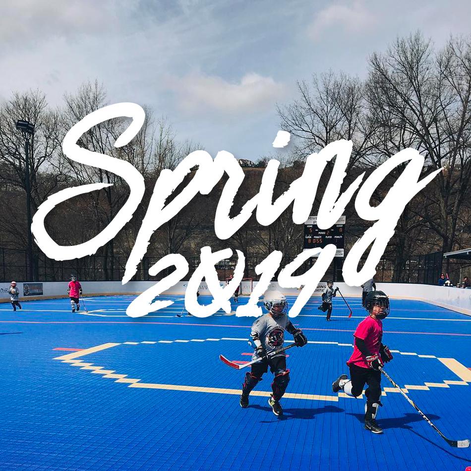 Hockey is Life! Spring 2019 Edition – Riverview Dek Hockey